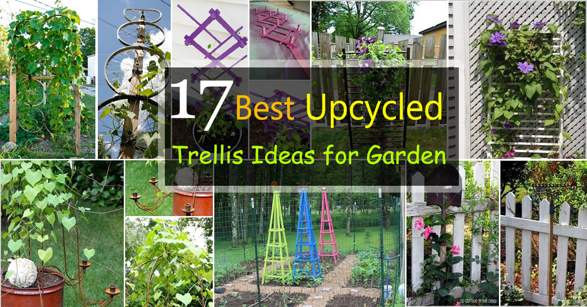 17 Best Upcycled Trellis Ideas For Garden | Cool Trellis ... Raised Beds Garden Arbor Designs on raised garden bed cold frame, raised garden bed tree, raised garden bed garden, raised garden bed bench, raised garden bed table,