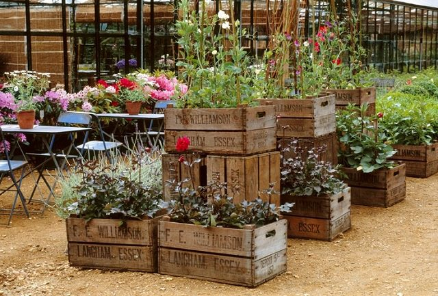 crates as planter