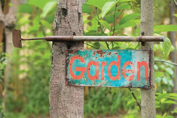 garden sign ideas (13)