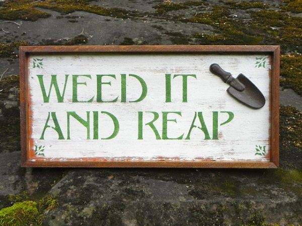 garden sign ideas (14)