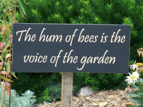 garden sign ideas (5)