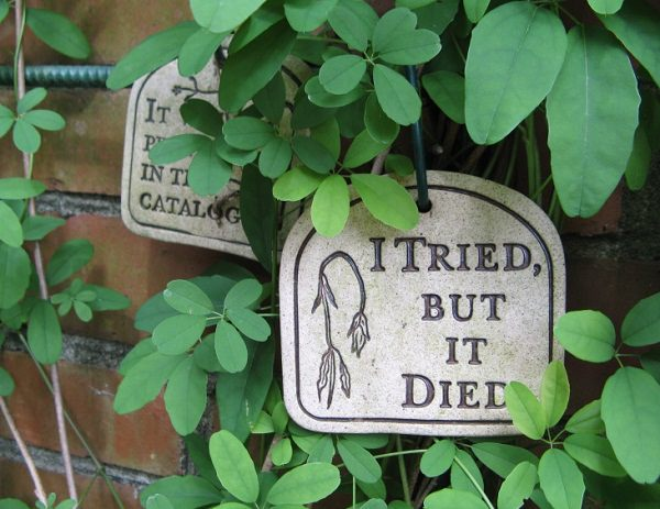 Hilarious Garden Signs That Will Inspire You And Make You Laugh