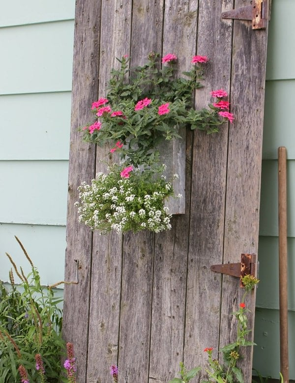 old door planter
