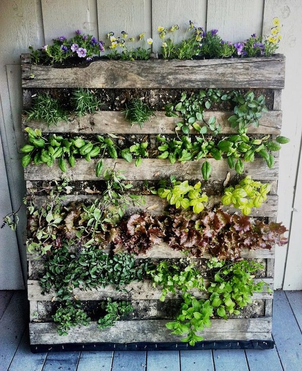 Vertical Garden Design Ideas Vertical Pallet Planter. balcony vertical garden
