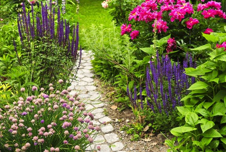 Essential Ways To Keep Your Garden Healthy (2)