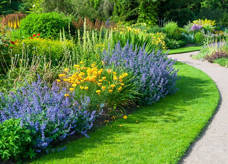 Essential Ways To Keep Your Garden Healthy 6