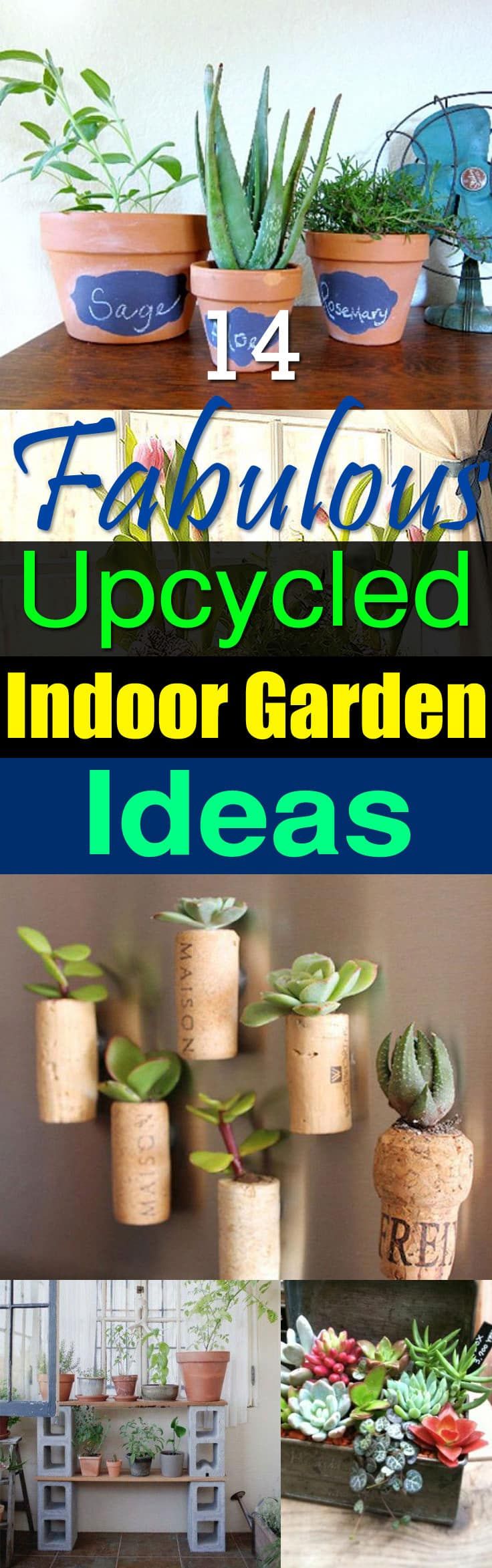 Want to grow an indoor garden from upcycled items at your home? Learn about these 14 Indoor Garden Ideas!