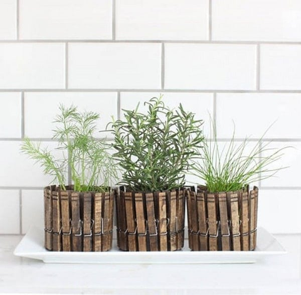 CLOTHESPIN PLANTERS