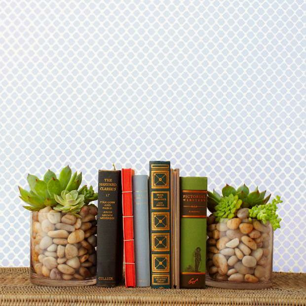 DIY Succulent Bookend