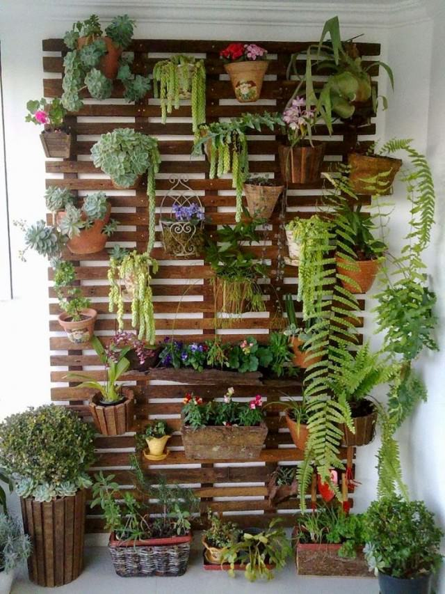 DIY Vertical Indoor Garden Ideas | Balcony Garden Web