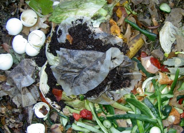 One of the best tea bag uses in garden is you can add it to compost