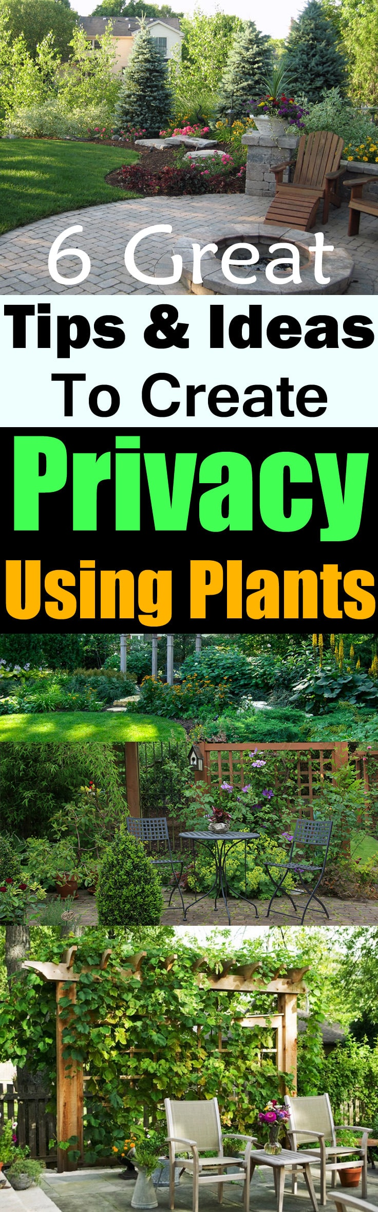 If you want to create privacy to save yourself from prying eyes, Use plants! Plants also improve the curb appeal and provide naturalness. Check out these 6 Tips & Ideas!