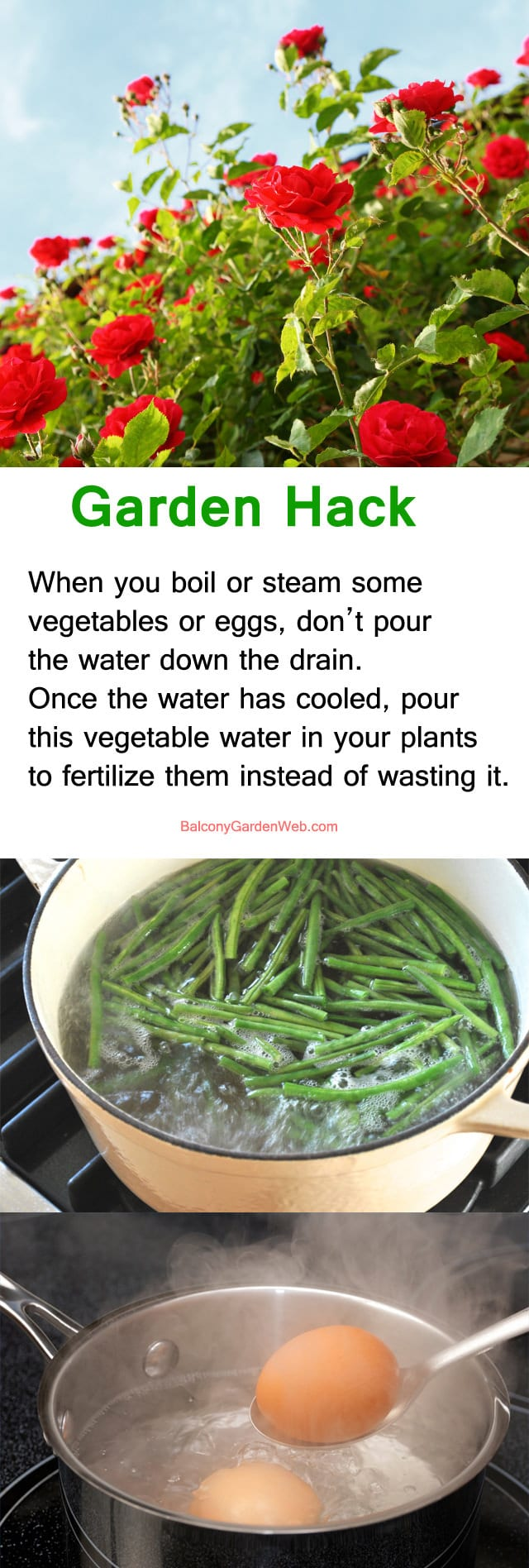 garden-hack-use-cooking-water