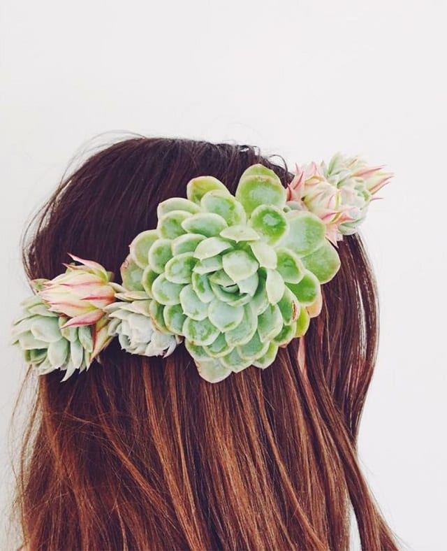 diy-succulent-crown