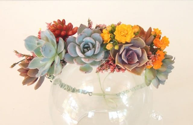 how-to-make-a-succulent-crown-1