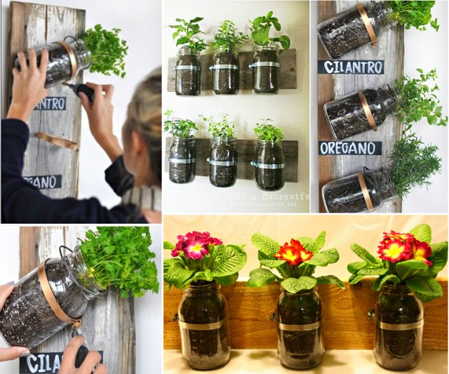 Upcycle mason jars and grow herbs and flower in them.