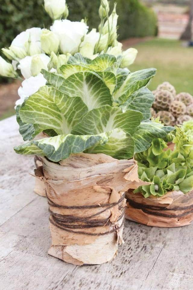 rustic-slice-of-greenery