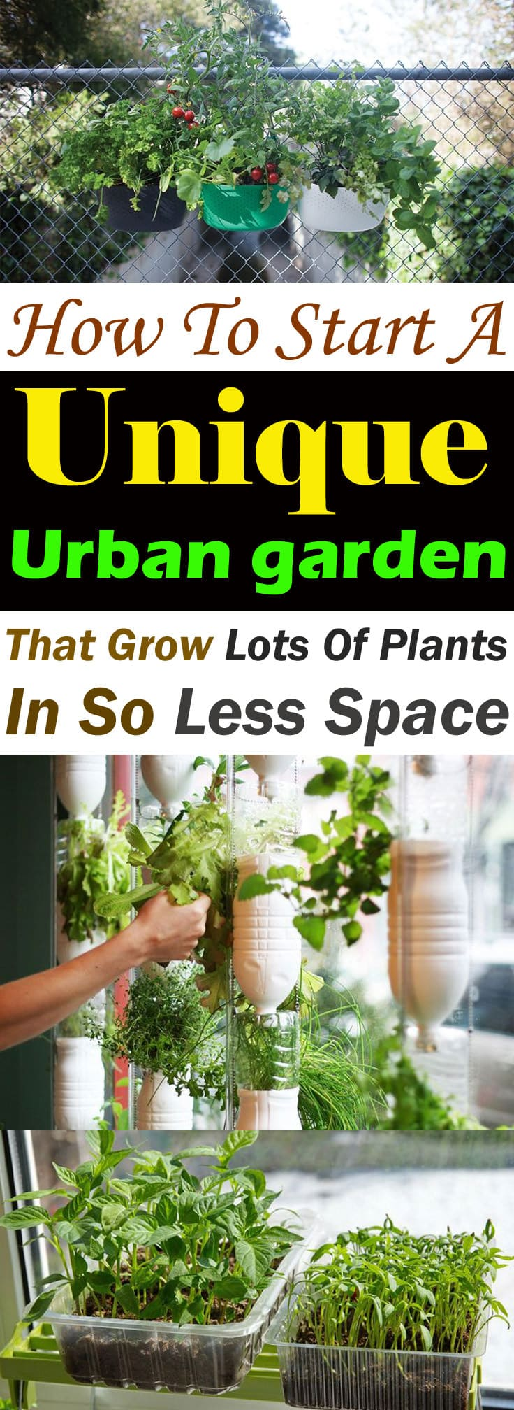 To start an urban garden, you need the right tools, ideas, and some inspiration. This post is all about that!