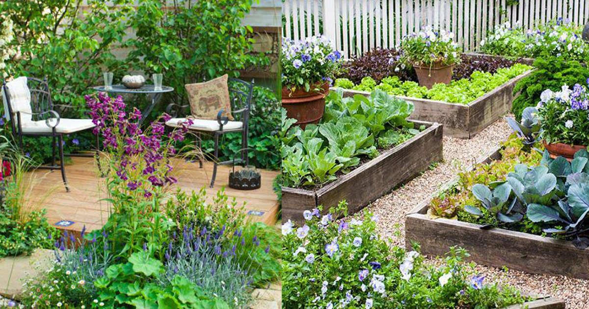 How to Create a Great Garden in Small Space | Balcony ...