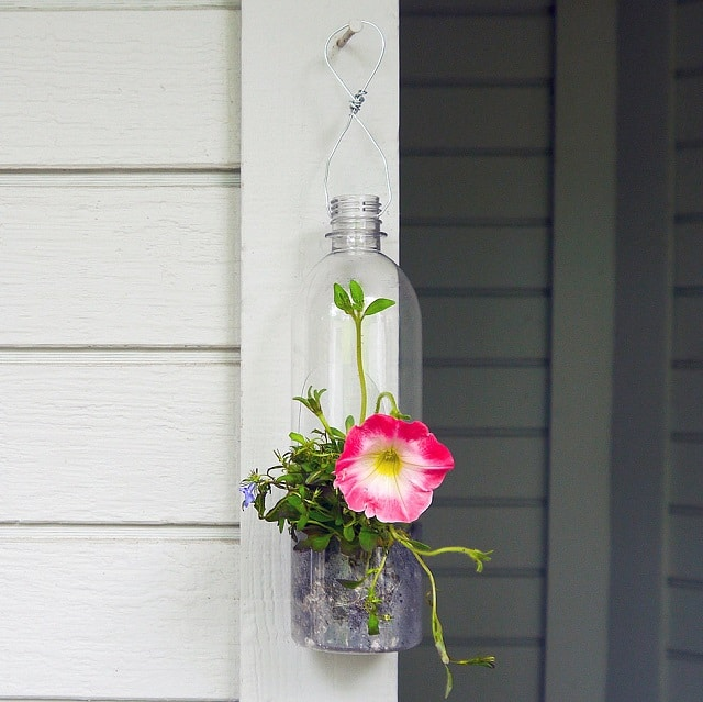Plastic-Bottle-Hanging-Planter