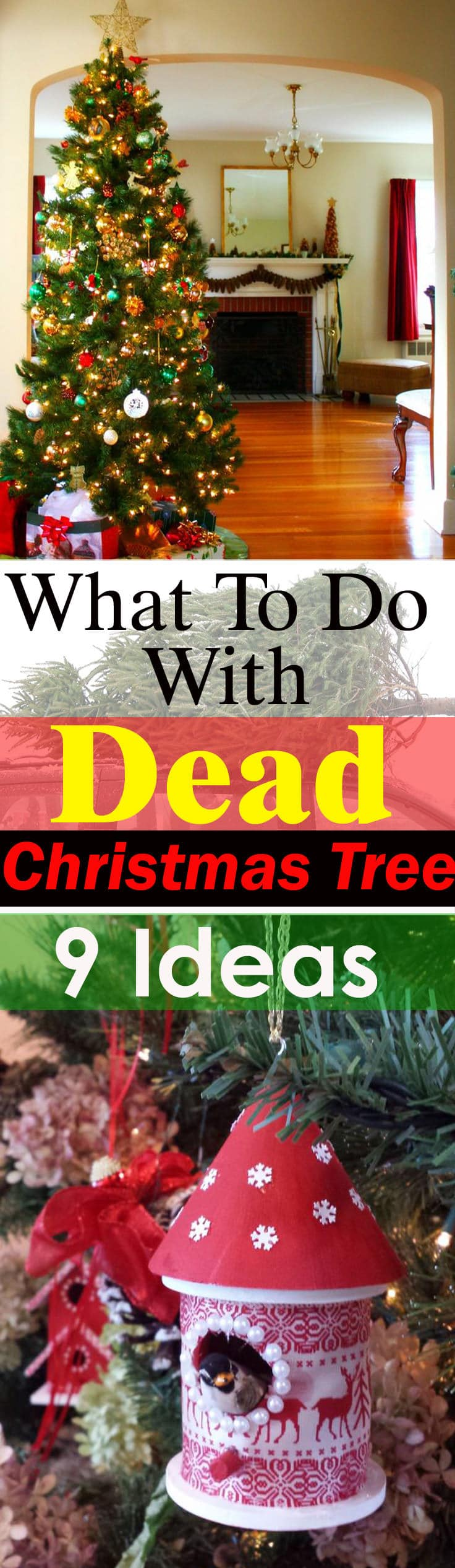 What To Do With Dead Christmas Tree 9 Ideas Balcony
