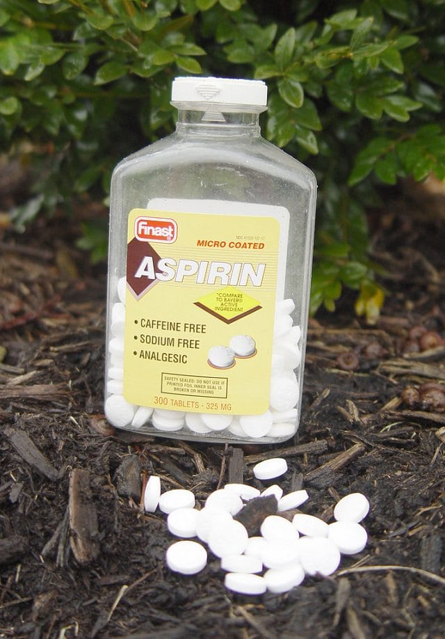 aspirin uses in garden 3