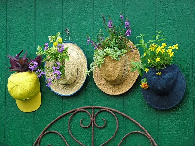 hat planter hanging