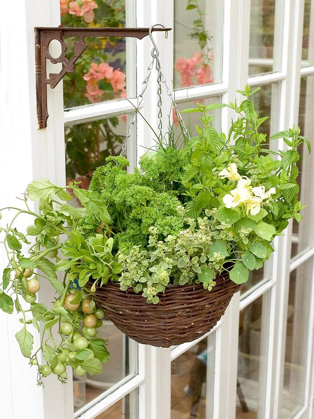 Growing herbs, greens, and even cherry tomatoes is possible in hanging baskets. Credit: HGTV