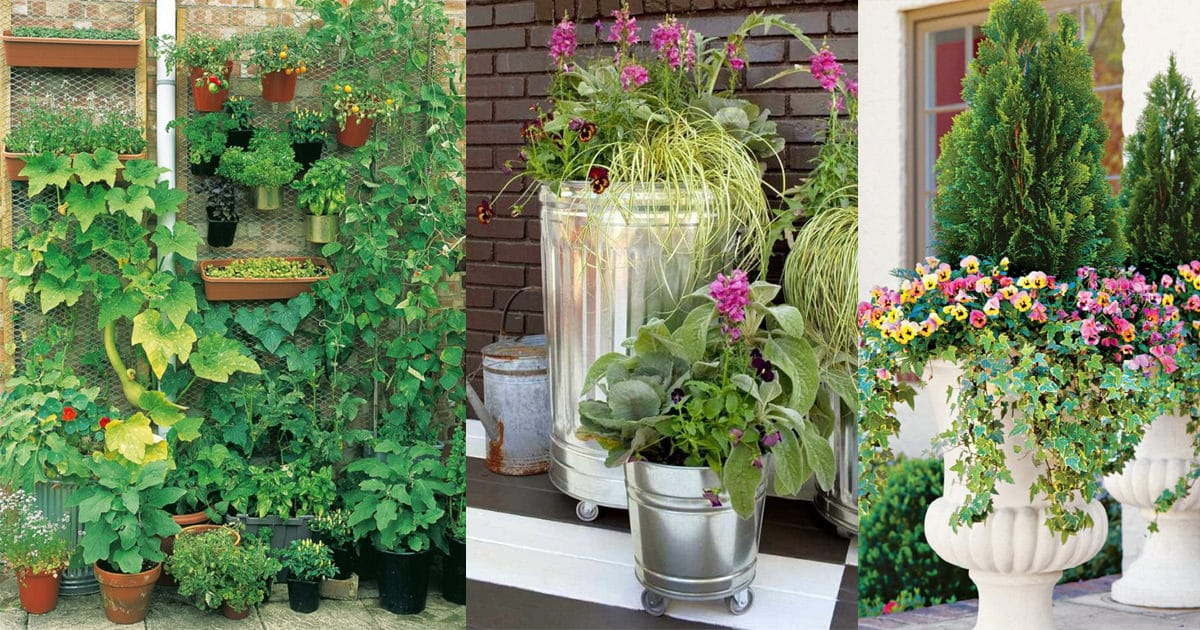 10 Creative and Trendy Container Garden Ideas You\'ll Love To Follow3 ...