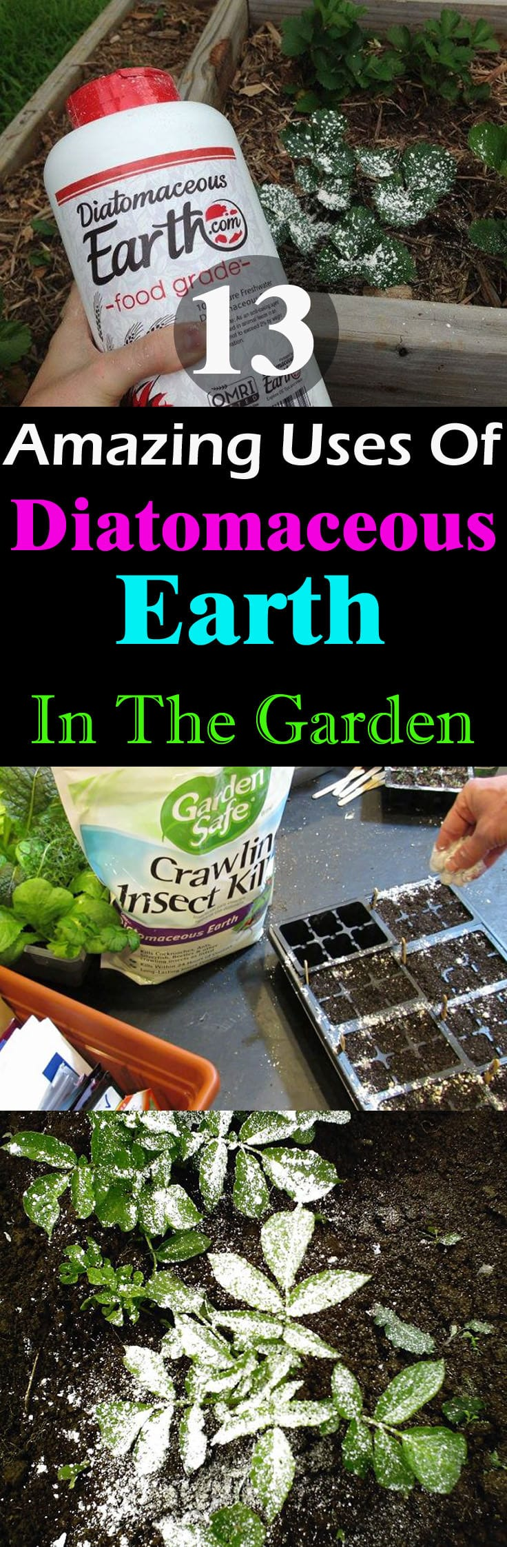 This naturally occurring substance can be used for so many things in the garden. Must check out these 13 Diatomaceous Earth Uses to learn more!