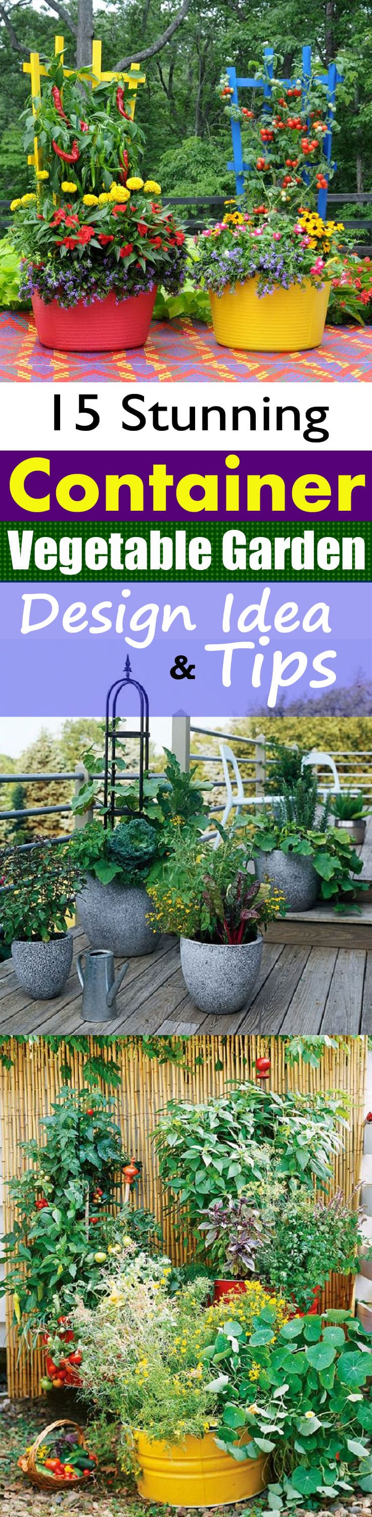 Container Vegetable Garden Design Ideas