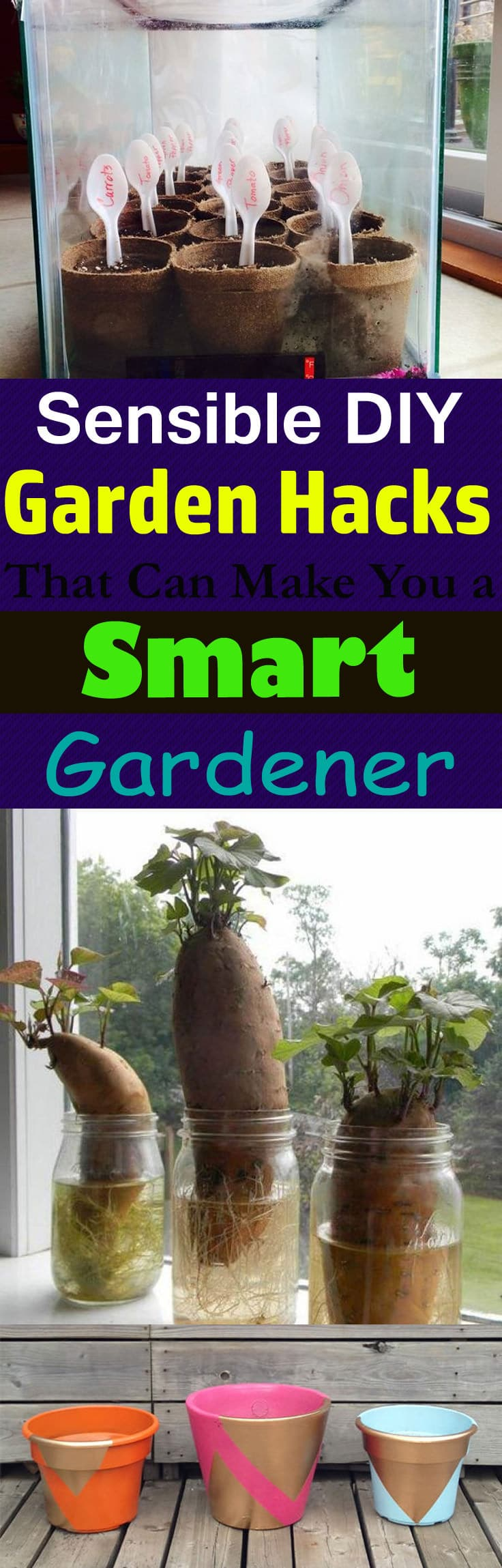 Must take a look at these gardening hacks and DIY ideas to make gardening easier and more fun!