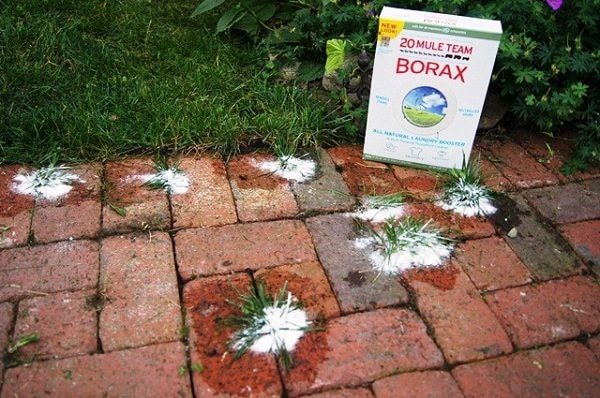 Unbelievable Borax Use