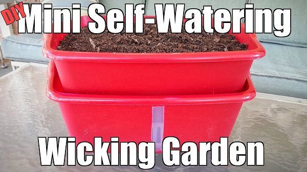 diy self watering container garden ideas 1