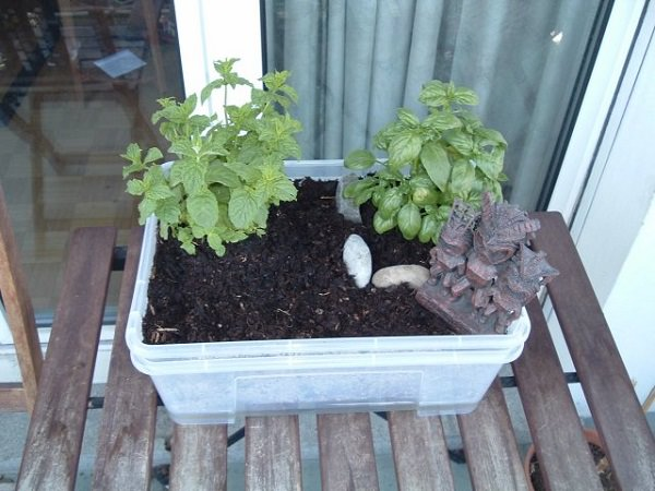 diy self watering container garden ideas 9