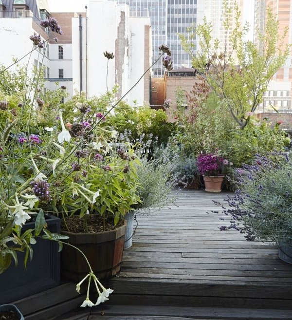 manhattan-roof-garden-decking-potted-plants-gardenista