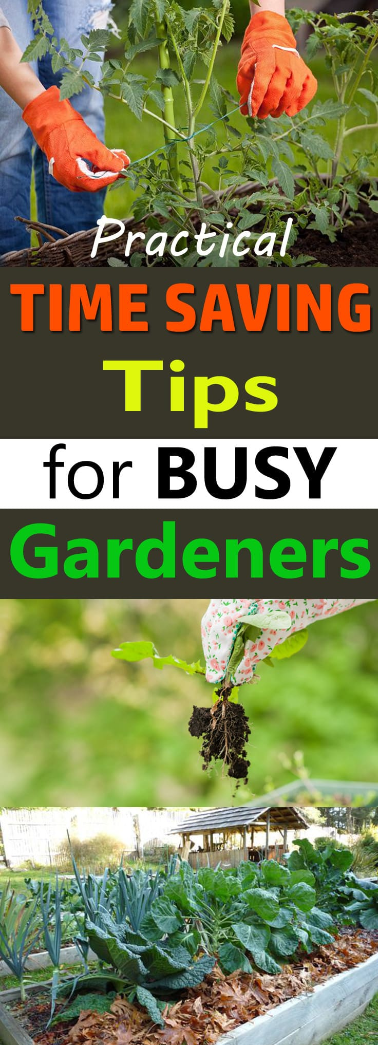 With these time saving tips for the garden, you can enjoy your garden more without working hard.