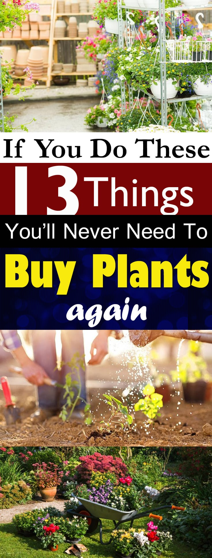 Save your money from buying PLANTS and get them free by applying these ideas. You read right-- Free!