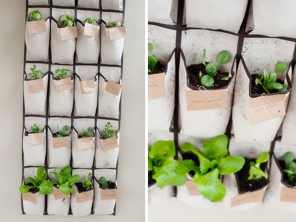 follow this diy hanging herb garden project to turn any ordinary shoe rack into a creative hanging garden learn more here - Hanging Herb Garden