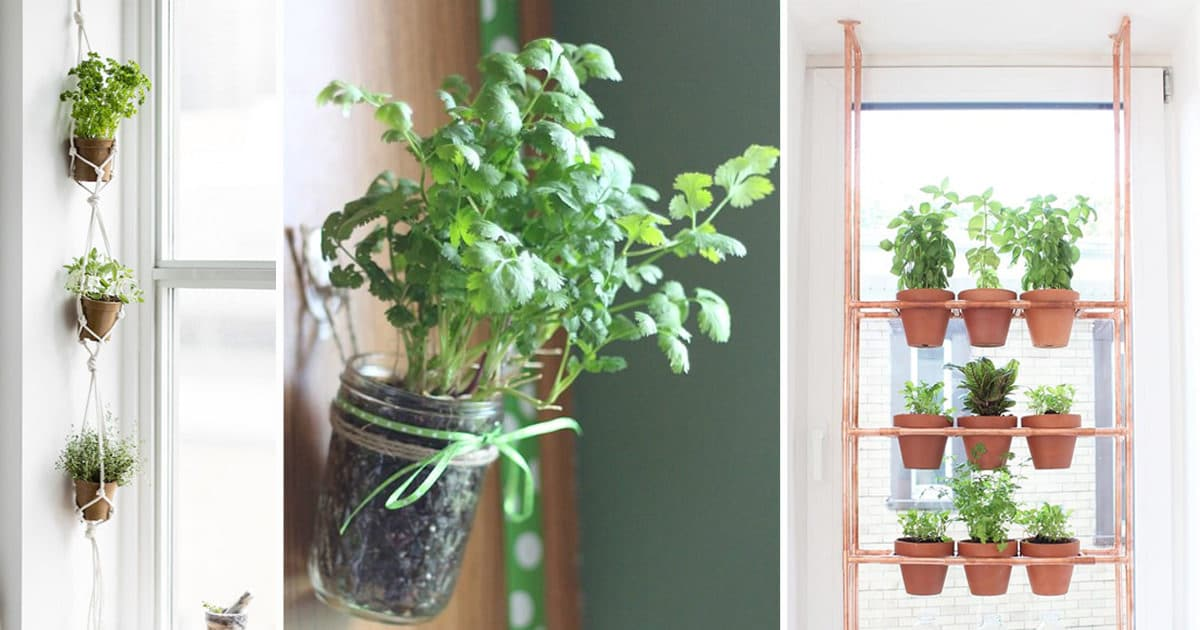 17 hanging herb garden ideas for small spaces balcony garden web - Hanging Herb Garden