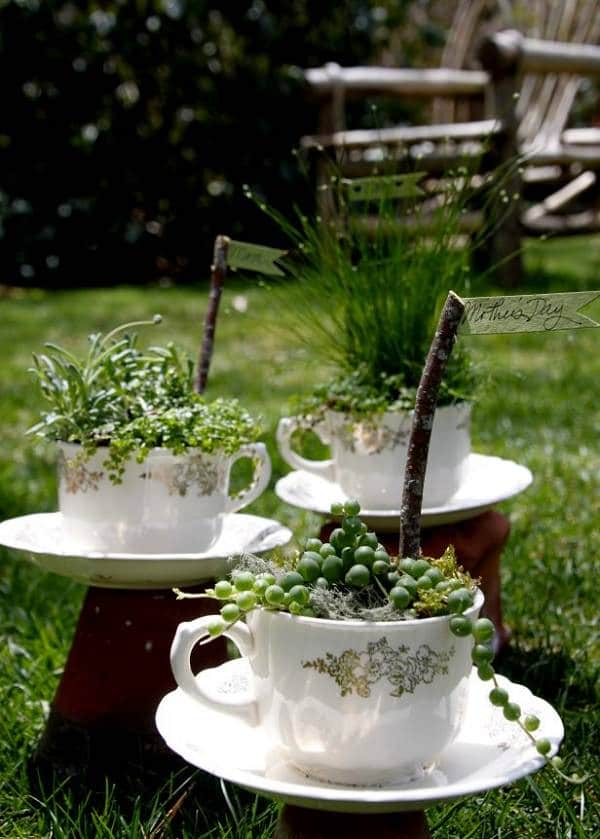 Teacups DIY planter ideas