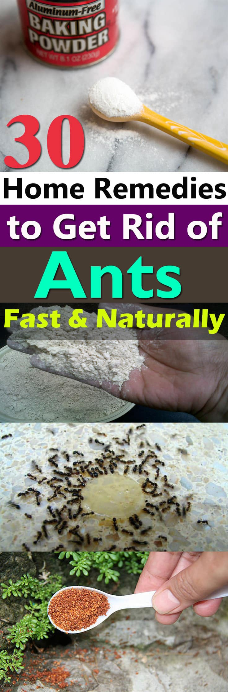 If you don't want to see ants crawling in your home and garden. Try one of these 30 Natural Home Remedies to Get Rid of Ants!