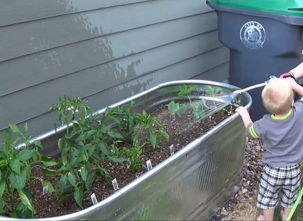Charmant If You Lack The Space Or The Energy To Maintain A Sprawling Vegetable Garden,  Keep Things Manageable And Compact By Creating Stock Tank Raised Gardening  ...