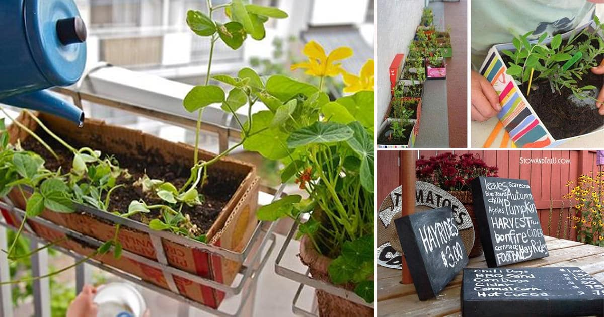 7 Best Diy Shoe Box Ideas Amp Uses For The Garden Balcony