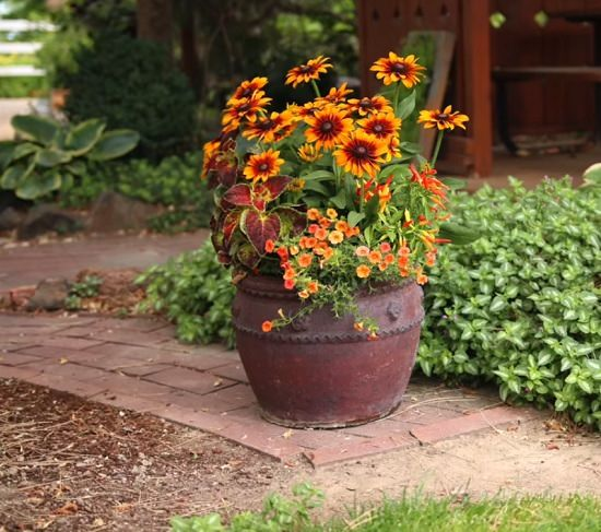 Late Fall Container & 19 Fascinating DIY Fall Garden Ideas | Balcony Garden Web