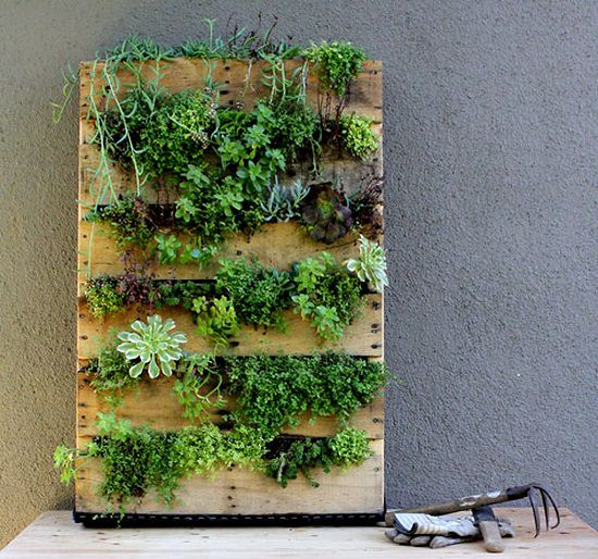 The Simplest Way To Add An Indoor Pallet Garden In Your E Is Make A Vertical Planter Follow This Step By Guide On How Recycled