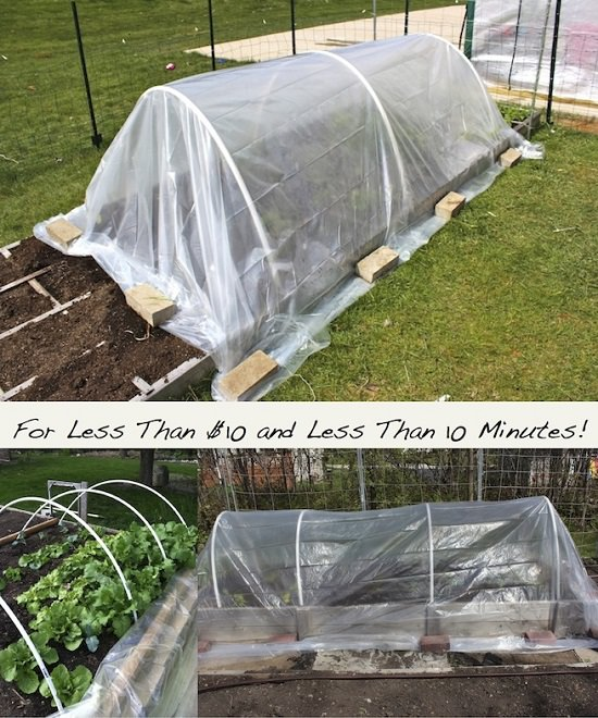 43 Budget-Friendly DIY Greenhouse Ideas | Balcony Garden Web