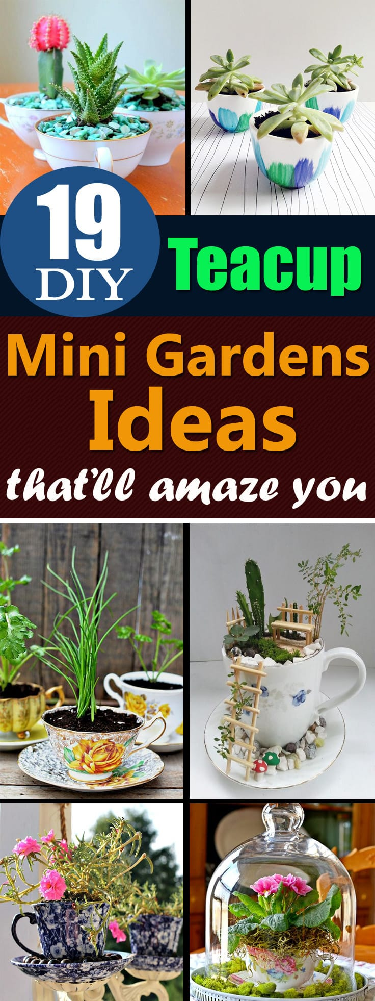 Give a second life to the unused teacups that you've with these DIY Teacup Garden Ideas!