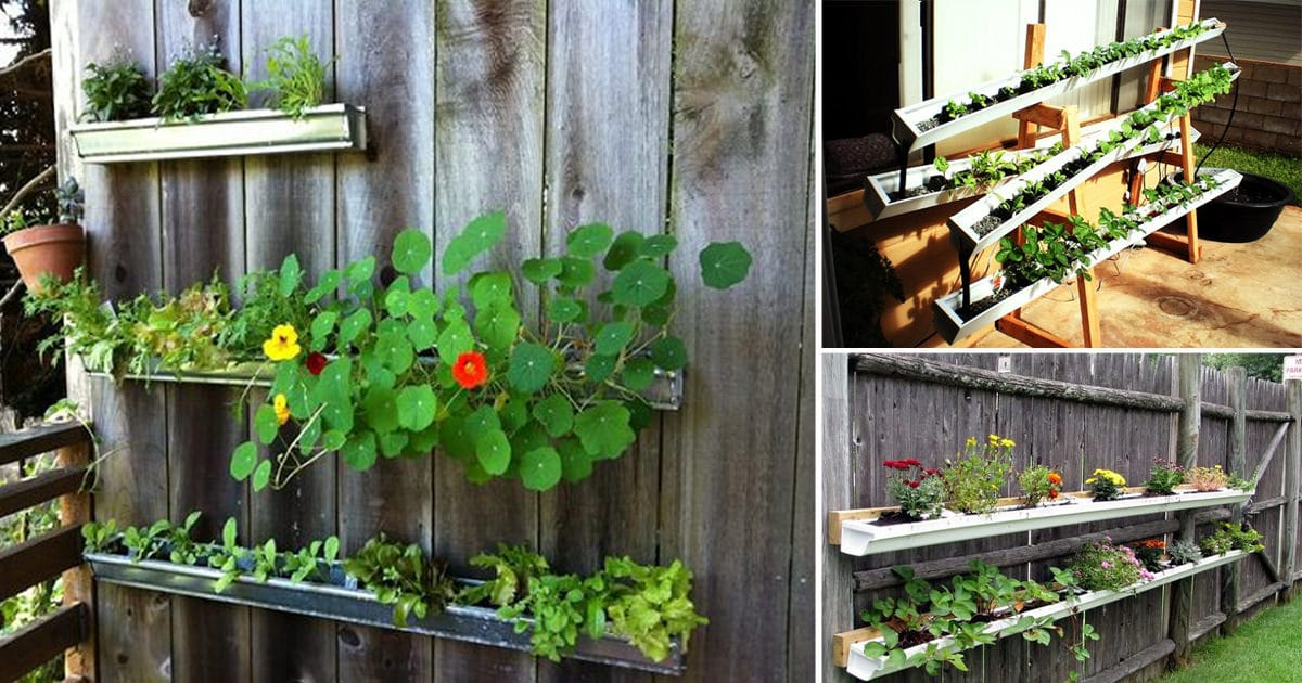 10 Creative DIY Gutter Garden Ideas Youll Love3