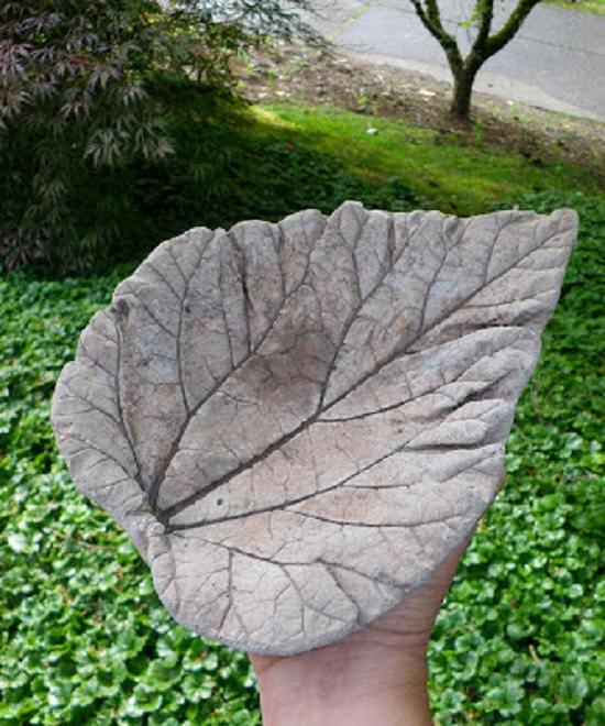 DIY Cement Garden Ideas that can transform the look